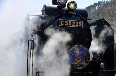 東北に復活するC58-239蒸気機関車「SL銀河」に乗って