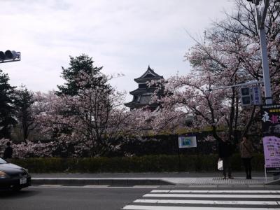 桜の季節の長野ドライブ①松本編