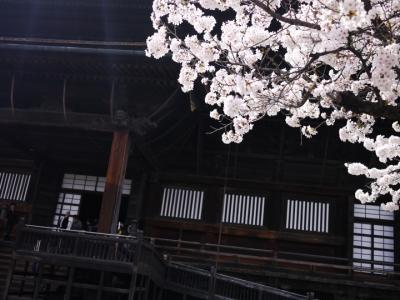桜の季節の長野ドライブ③長野編