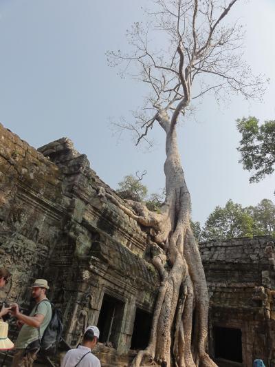 気ままにラオス、ひたすら歩いて2週間 10(カンボジア・アンコールワット他)
