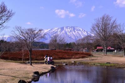 いわて花めぐり(8) 岩手山に魅せられ