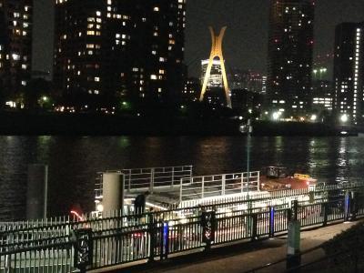 屋形船 ~海からレインボーブリッジ、東京タワー、そしてお台場を眺める~