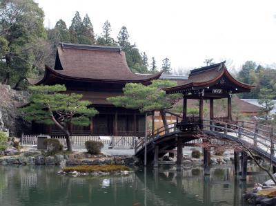 虎渓山永保寺・多治見の桜