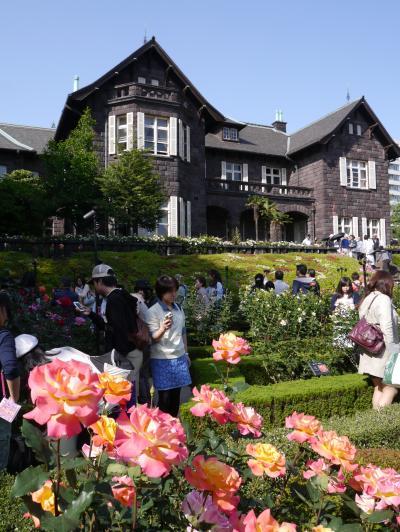 バラが咲いた、日傘も開いた…旧古河庭園