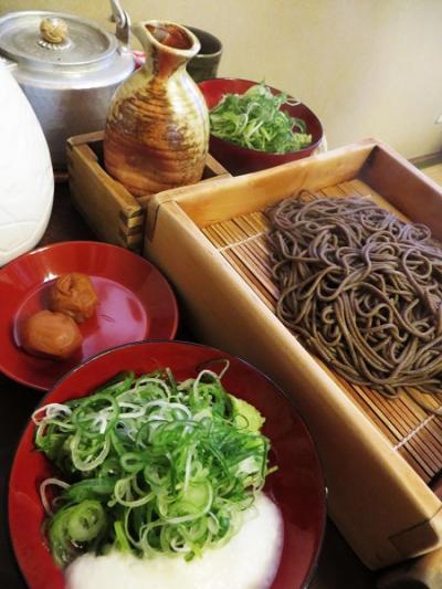 京都春爛漫の桜行脚 ⑧ ー 美味探訪は如何に・・・・?