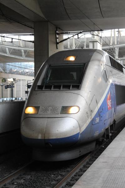 2014年 GWに行くフランス旅行!美食の街・リヨンとスウィーツの町・ストラスブールを訪問。もちろん歴史ある町の雰囲気も最高でした(笑) PART2(TGVで行くリヨンへ道!編)