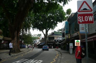 6年ぶりのシンガポール~③朝から筋肉痛、朝から肉、ホランドヴィレッジ訪問~