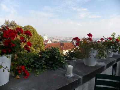 ソリちゃんのプラハ旅行記 2013年度版