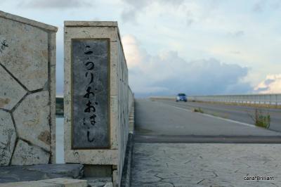 戻ってきました!沖縄!!