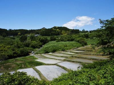 静岡の原風景 / 掛川・深山の里&菊川・上倉沢棚田
