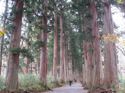 2010☆戸隠神社