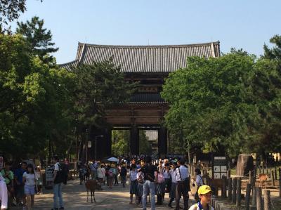 鎌倉の仏像を観に奈良へ行ったが一番印象に残ったのは修学旅行生だった