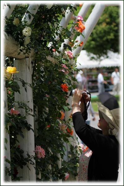 Solitary Journey [1394] 見ごろを迎えた初夏を彩る薔薇、モネゆかりの睡蓮も咲いていました♪<湧永庭園バラ園> 広島県安芸高田市