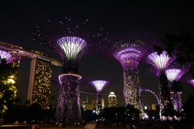 6年ぶりのシンガポール~⑤リトルインディア散策と念願のガーデンズバイザベイとク・デ・タでカクテル&夜景~