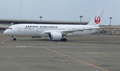 ☆JAL B787で飛ぶ。。。成田~サンディエゴ~成田 ひやひや、ドキドキ?空の旅編☆