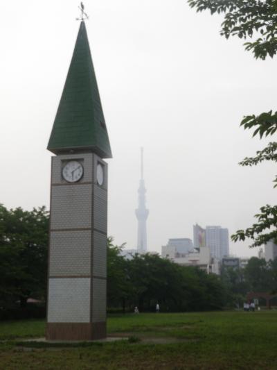 錦糸町駅南口から歩いて猿江恩賜公園に行きました
