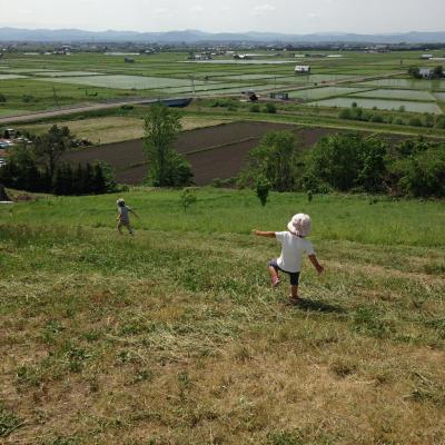 旭川、美瑛、富良野、層雲峡。北海道へ3泊4日家族旅行。