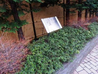 日本の旅 関東地方を歩く 東京都三鷹市(みたかし)の玉川上水(たまがわじょうすい)、むらさき橋(むらさきばし)、太宰治が入水心中した場所のプレート碑周辺