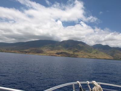 マウイ島でダイビング&グルメ(2日目)