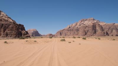 2014年GW ヨルダン&アブダビの旅③