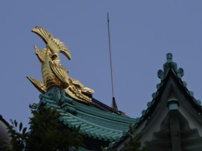 今さらの名古屋城とPV