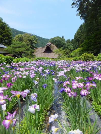 越前竹人形の里と千古の家に行って来ました。