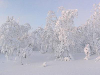 フィンランド オーロラを見るための旅 3話目