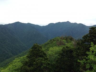 稲村ヶ岳 トレッキング