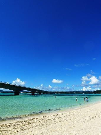 沖縄:ザ・ブセナテラス宿泊 リフレッシュの旅(4) JALライナー編