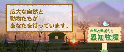 愛知牧場・四季彩の丘(ひなげしの花・他)