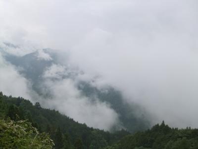 天竜路ドライブ~新緑と雲海を求めて~