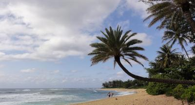 2014年GW 初めてのハワイ旅行4 ハレイワ&タンタラス
