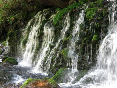 ☆森吉山、白神山地、象潟/元滝伏流水を廻る