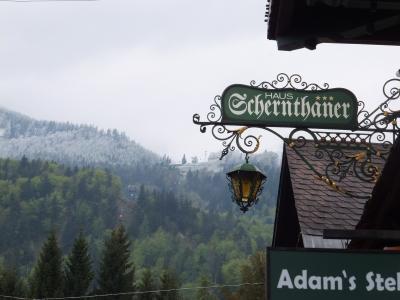 2014GW 南ドイツとオーストリア&ちょっぴりイタリアちょっぴりフランス 【12】ザンクト・ギルゲン?