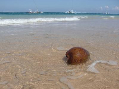バリ島 ザ・バレで過ごすお籠りバカンスと腰痛②