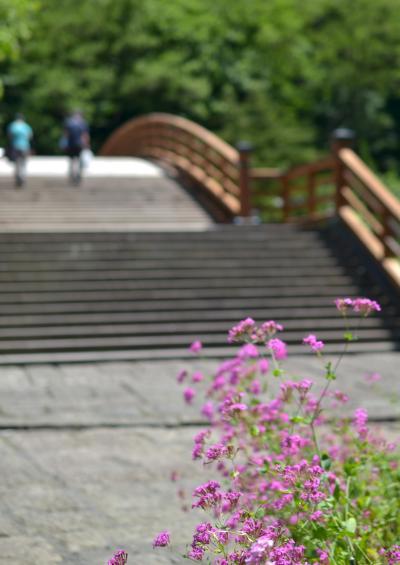 梅雨の奈良井宿散策 2014