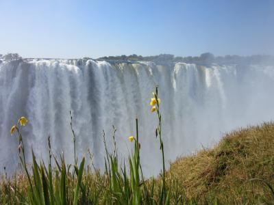 南部アフリカ5か国周遊--南アフリカ・ザンビア