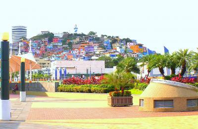 ゾウガメ、オットセイを見に行くぞ~!ガラパゴス諸島の入口の.....エクアドルの首都:キトやら....ちょい治安が悪い....グアヤキルとか......(Quito.Guaiaquil/エクアドル)