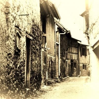 コロンバージュの家並みを見たい!アルザス地方の可愛い村へ!⑫ ~いにしえの農村の風情を楽しむ~