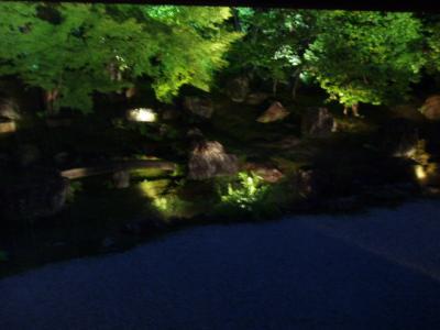 京都高台寺圓徳院の夜間特別拝観とSL北びわこ号C56を見物