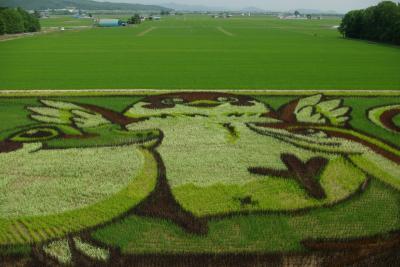 2014北海道2(旭川田んぼアート・日暮れの利尻富士)