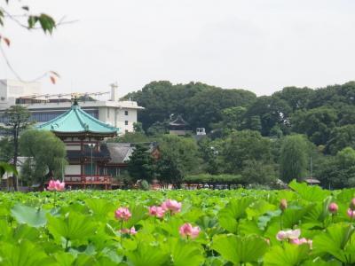 えきぽで散策@御徒町駅 ~梅雨の中休み、下町ぶらり旅編~