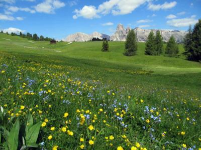 ドロミテをレンタカーで周る(3)  プラロンジア高原、オルティセイ、プローゼ、レノン高原