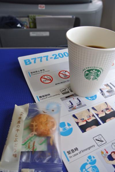 ドーミーイン下関に続いてドーミーイン熊本へ(帰りは、福岡空港から羽田空港経由で伊丹空港へ)
