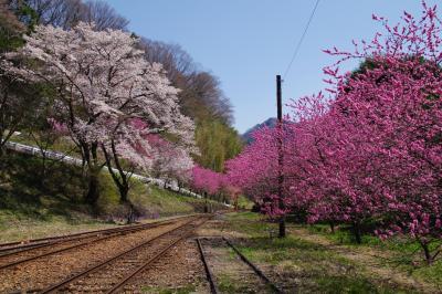 2014年4月 栃木方面
