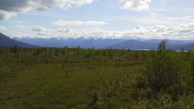 アラスカ・カナダユーコンドライブ旅行(その5) ホワイトホース→(国境)→アラスカ・トクJC