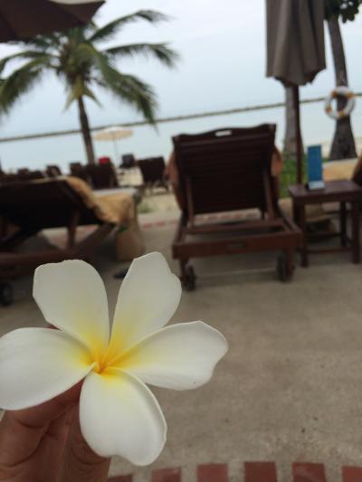 初めてのアジアリゾート~サムイ島⑤