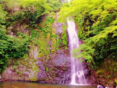 森にかえろう! in 箕面の滝