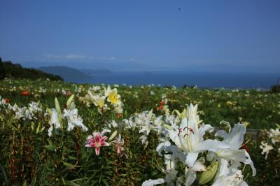 旅するイルカ♪ 箱館山ゆり園と三方五湖クルーズへ