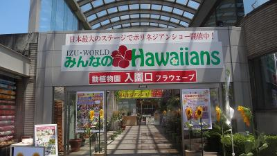 IZU・WORLD みんなのHawaiians と 道の駅伊豆のへそ 観光と昼食編 下巻